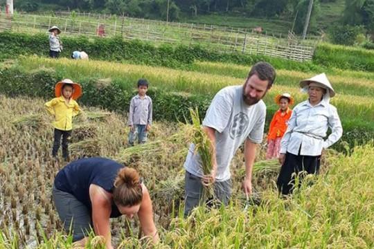 Du lịch nông nghiệp - 'Nàng tiên' cần được người Việt đánh thức