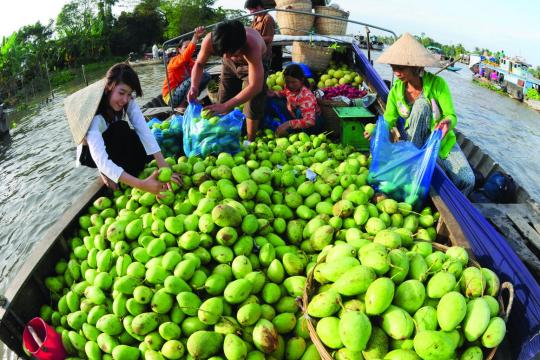 Du lịch nông nghiệp Đài Loan – nguồn cảm hứng cho du lịch Việt Nam